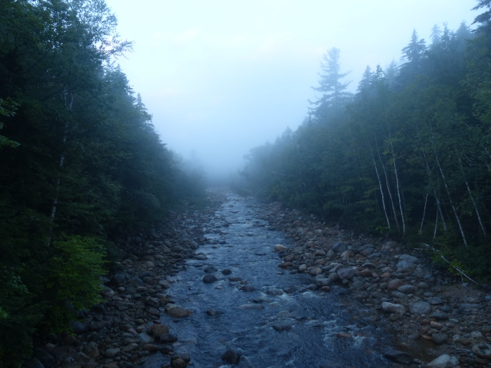 Wild River in the morning fog