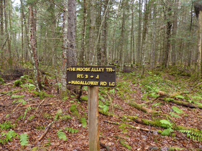 Trail sign with letters nailed on