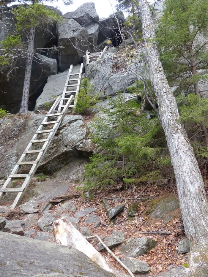 Ladders near the summit of Mt. Morgan